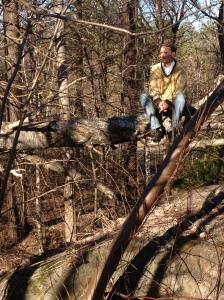 Giten, foto, gul tröja, sittande på gren, längre bort